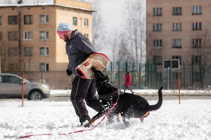 http://images.vfl.ru/ii/1492791536/7bf132bf/16945397_m.jpg
