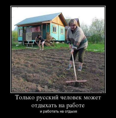 http://images.vfl.ru/ii/1492805760/84bb0e31/16949336_m.jpg