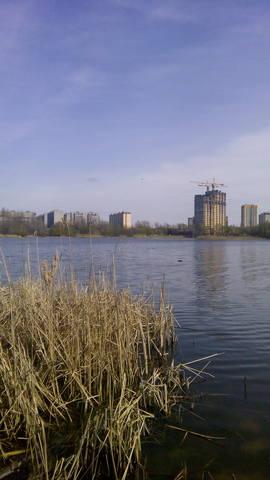 http://images.vfl.ru/ii/1492806055/a3fa2a26/16949390_m.jpg