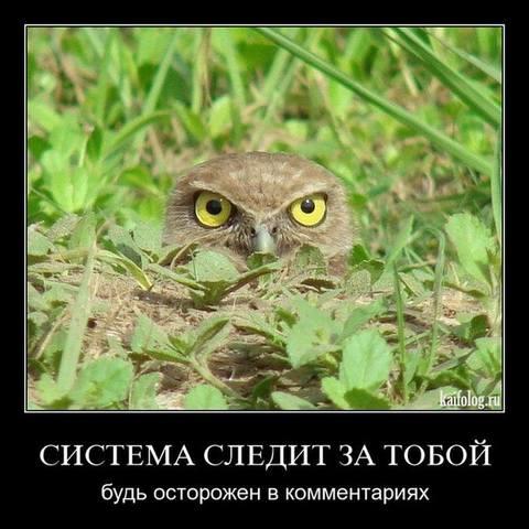 http://images.vfl.ru/ii/1492808092/2b01337e/16949884_m.jpg