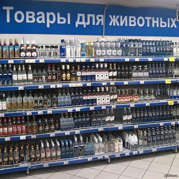 http://images.vfl.ru/ii/1493060278/344deee5/16985312.jpg