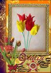 http://images.vfl.ru/ii/1493104108/0d0aba58/16989639_m.jpg
