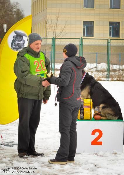 http://images.vfl.ru/ii/1493129745/a46d0c4a/16994616_m.jpg