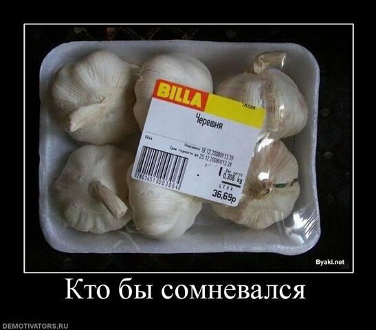 http://images.vfl.ru/ii/1493189438/6d46281f/17002328_m.jpg