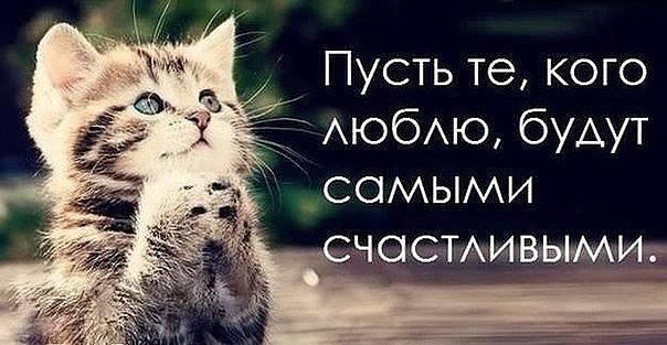 http://images.vfl.ru/ii/1493239062/28fc41a9/17012002_m.jpg