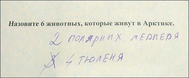 http://images.vfl.ru/ii/1493364491/df954535/17027876.jpg
