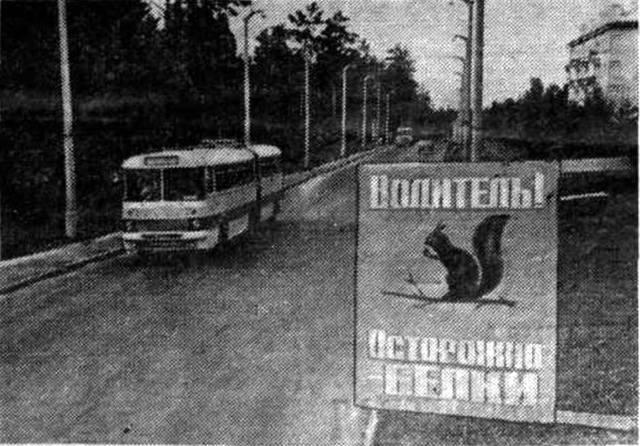 http://images.vfl.ru/ii/1493397053/424b6afd/17033866_m.jpg