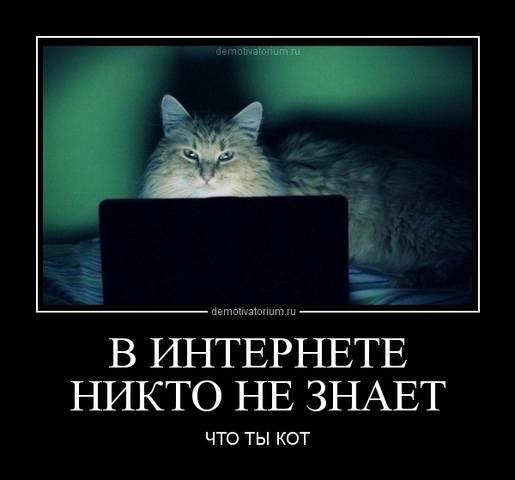 http://images.vfl.ru/ii/1493500528/b48f28d8/17047068_m.jpg