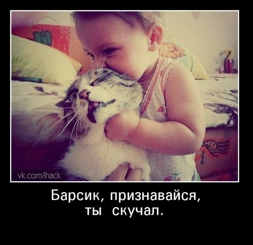 http://images.vfl.ru/ii/1493503619/a3993ed2/17047430_m.jpg