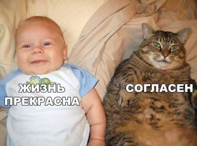 http://images.vfl.ru/ii/1493631801/15511c80/17063523_m.jpg