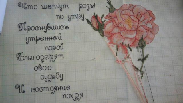 http://images.vfl.ru/ii/1493646224/ff3d4ead/17066689_m.jpg