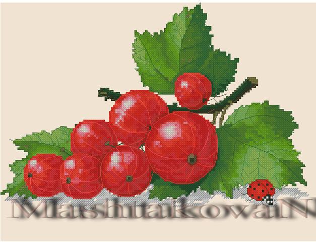 http://images.vfl.ru/ii/1493648884/4efabfd9/17067236_m.jpg
