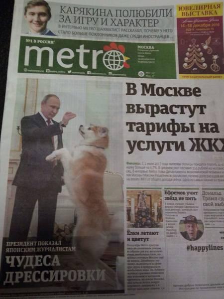 http://images.vfl.ru/ii/1493658106/b4d549f3/17068977.jpg