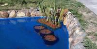 Скоро лето, жара, вам нужен искусственный пруд!