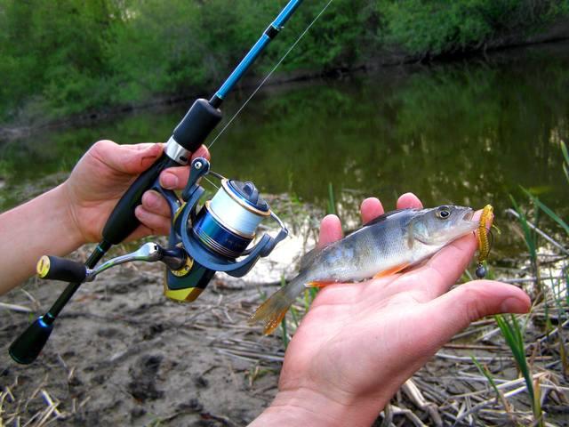 рыбалка в херсонской области херсон