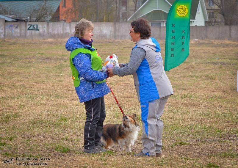 http://images.vfl.ru/ii/1494236822/123fa187/17145628_m.jpg