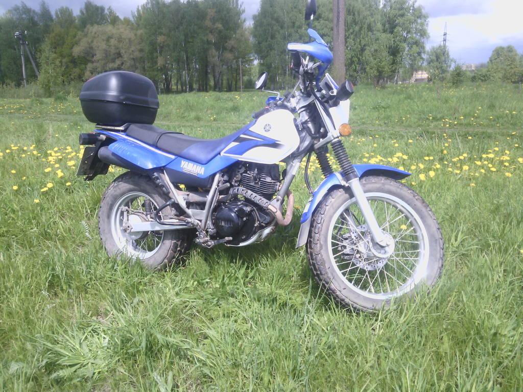 http://images.vfl.ru/ii/1496001065/963d8db1/17382668.jpg