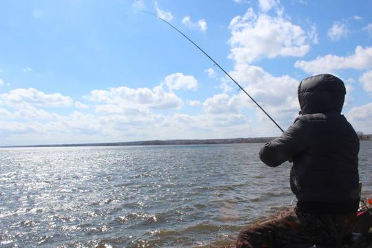 рыболовы любители выловили
