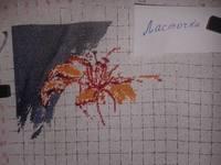 http://images.vfl.ru/ii/1496308375/7e664729/17423309_s.jpg