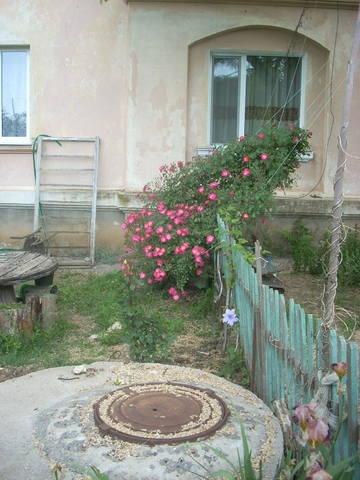 http://images.vfl.ru/ii/1496349240/1d1fad7c/17430420_m.jpg