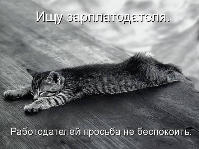 http://images.vfl.ru/ii/1496380524/68d0d905/17432591_m.jpg