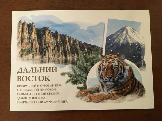 http://images.vfl.ru/ii/1496428247/1acfab42/17440760_m.jpg