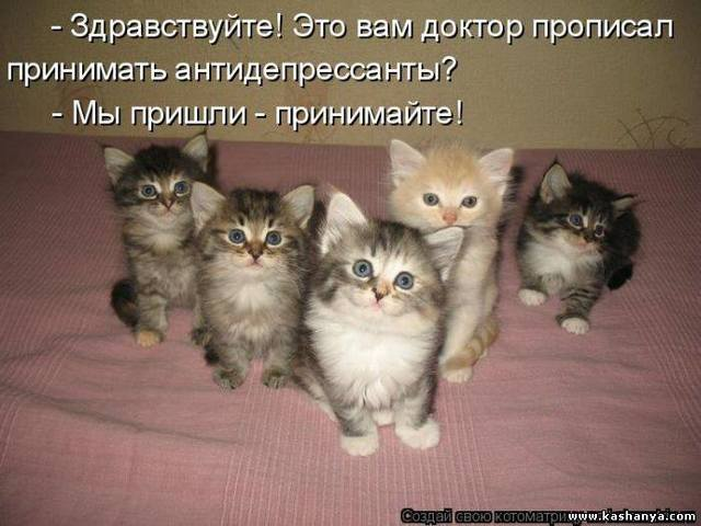 http://images.vfl.ru/ii/1496614344/55f6e960/17464527_m.jpg