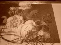http://images.vfl.ru/ii/1496768936/628a7302/17486271_s.jpg