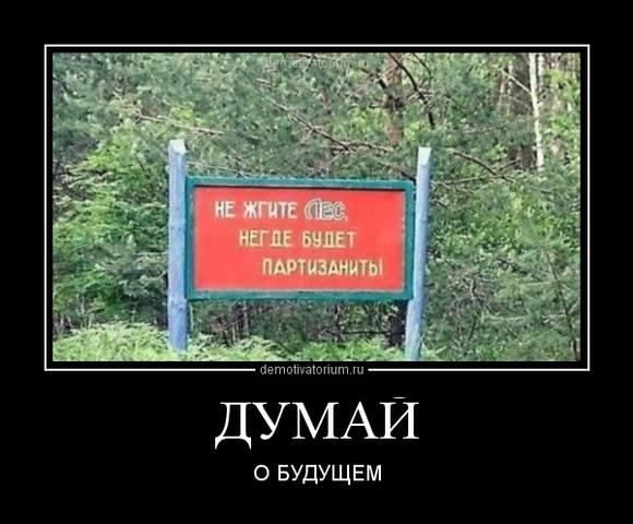 http://images.vfl.ru/ii/1496782405/3d6cd7ee/17488550_m.jpg