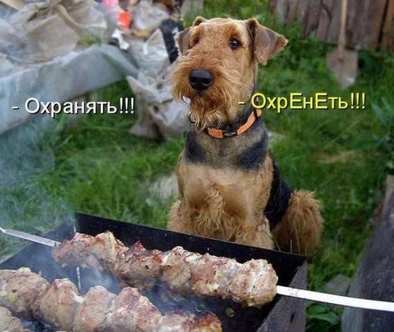 http://images.vfl.ru/ii/1497095288/c0230905/17524776_m.jpg