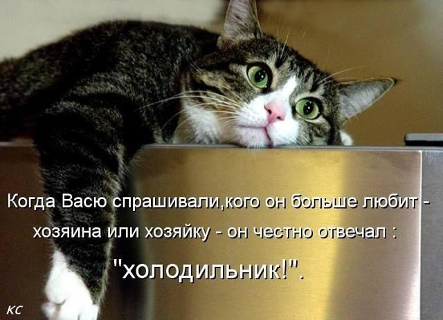 http://images.vfl.ru/ii/1497204791/af498f61/17538222_m.jpg