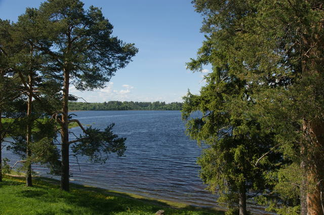 http://images.vfl.ru/ii/1498073187/6c842fcb/17660924_m.jpg