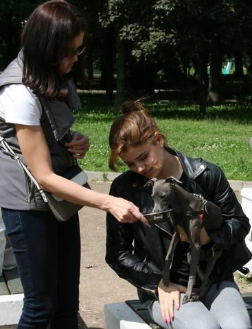 http://images.vfl.ru/ii/1498408949/3ec045a1/17709446_m.jpg