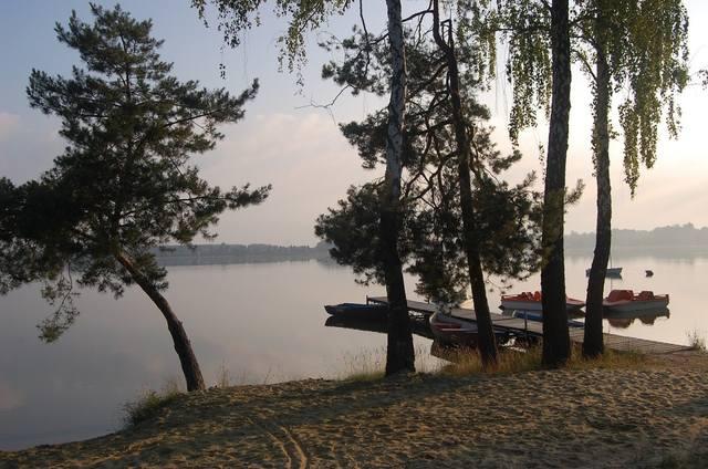 images.vfl.ru/ii/1498647423/b16833a7/17741309_m.jpg