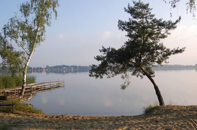 images.vfl.ru/ii/1498647423/e89bd2db/17741308_m.jpg