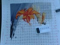 http://images.vfl.ru/ii/1498709754/23ecc450/17748673_s.jpg