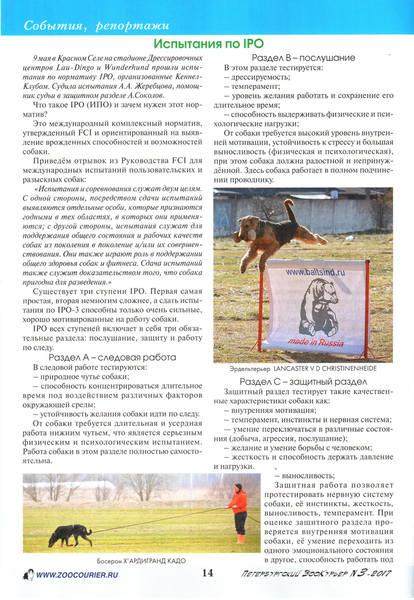 http://images.vfl.ru/ii/1498910404/0209941b/17776997_m.jpg