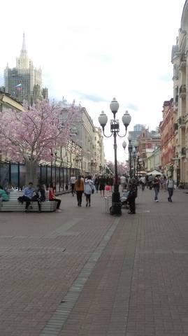 Москва златоглавая... - Страница 18 17780067_m