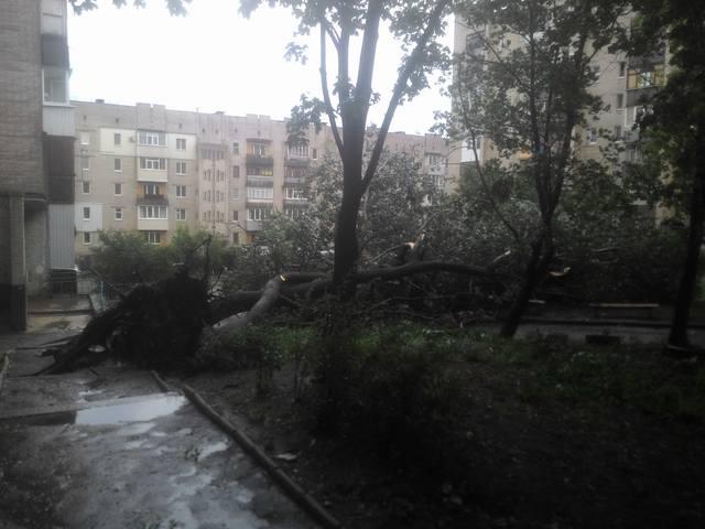 http://images.vfl.ru/ii/1498986866/388b6f11/17785924_m.jpg