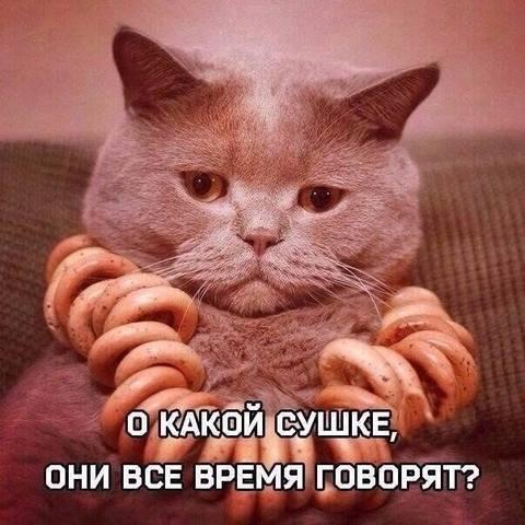 http://images.vfl.ru/ii/1499710105/83ab978e/17880330_m.jpg