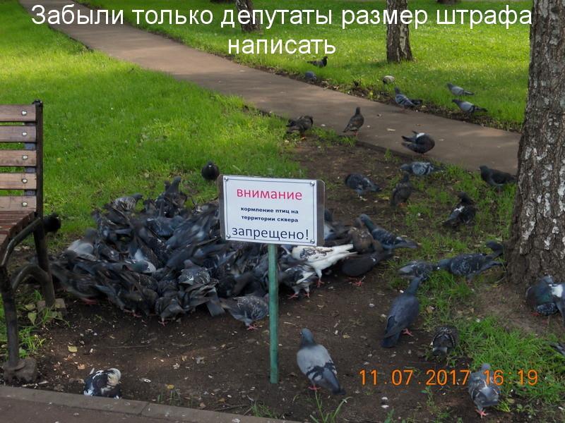 http://images.vfl.ru/ii/1499798274/bb24388f/17891152.jpg