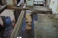 http://images.vfl.ru/ii/1500220398/34c6cd80/17943076_s.jpg