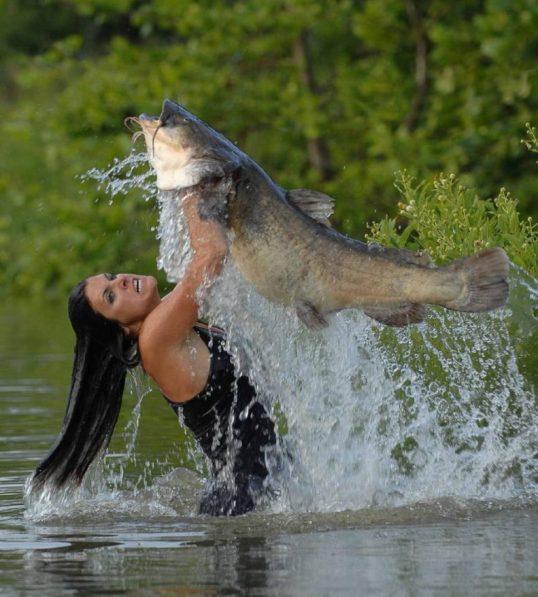 Что означает ловить рыбу в чистой или мутной воде руками — расшифровка сна по 41 соннику.
