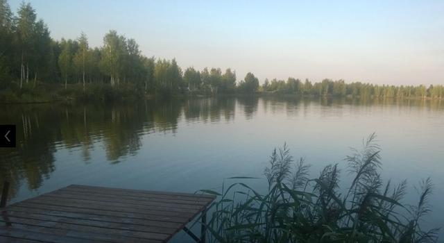 http://images.vfl.ru/ii/1500664836/9514e24d/17995399.png