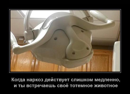 http://images.vfl.ru/ii/1501182770/6f3182fa/18055000.jpg