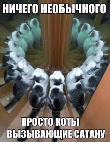 http://images.vfl.ru/ii/1501261277/df49b060/18064824_m.jpg