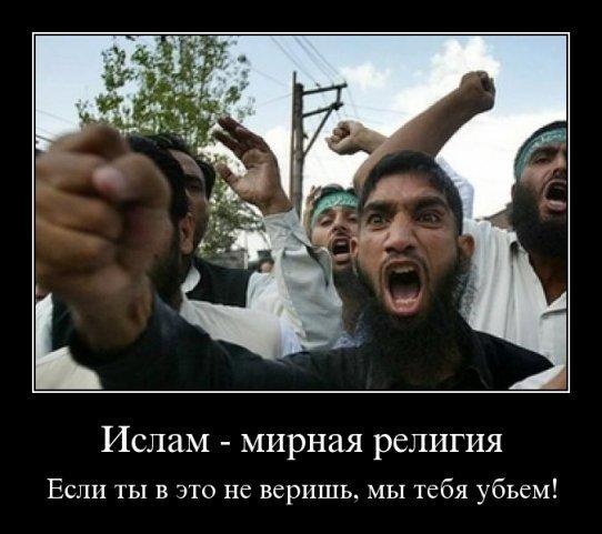 http://images.vfl.ru/ii/1501329586/923b54f0/18070547.jpg