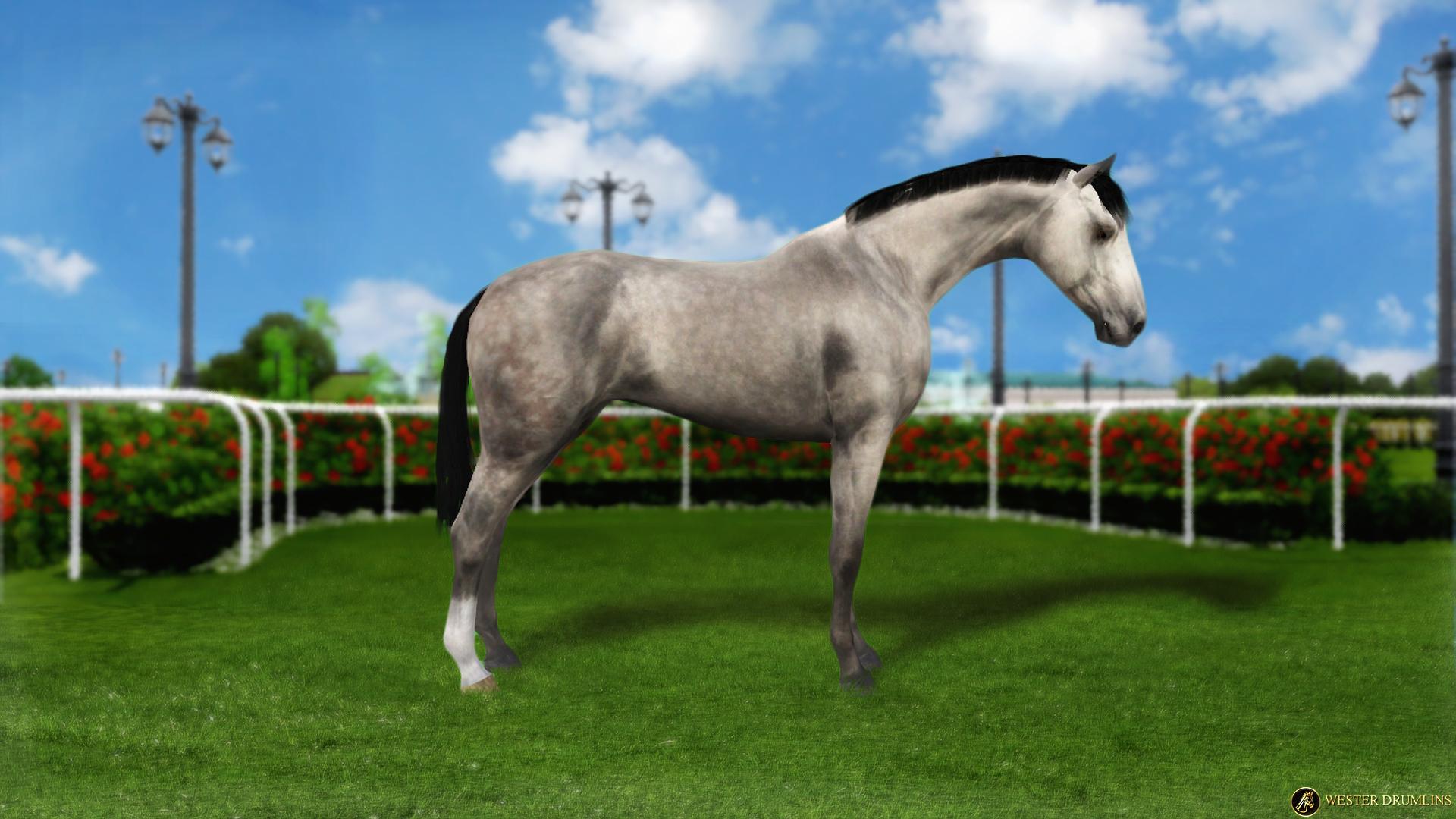 Регистрация лошадей в RHF 2 - Страница 7 18092355