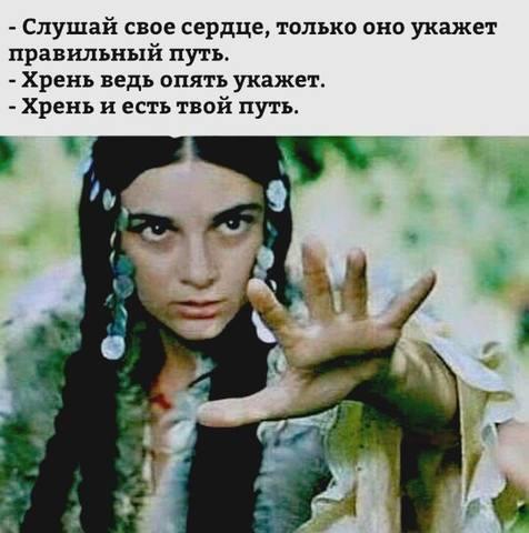 http://images.vfl.ru/ii/1502141892/e96c20ae/18175109_m.jpg