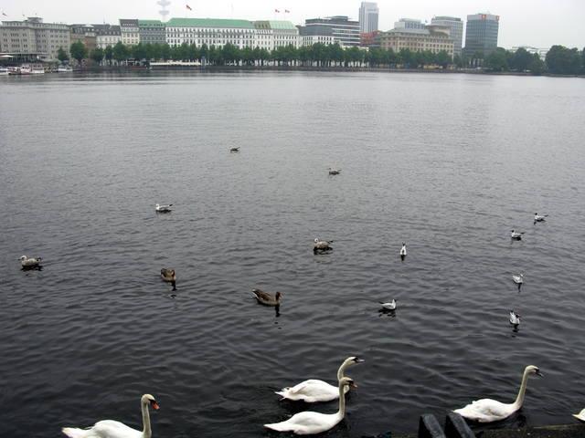 http://images.vfl.ru/ii/1502470885/f2c3396c/18215781_m.jpg